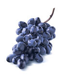 Diagonal dry blue grapes bunch isolated on white. Background as package design element Royalty Free Stock Images