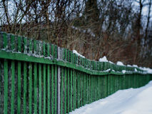 Diagonal green winter fence Royalty Free Stock Photo