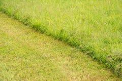 Diagonal line in grass Stock Photos