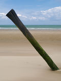 Diagonal piling on beach. Diagonal  piling leaning on beach, Calais, France Stock Image