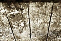 Diagonal sepia vintage wooden texture background Royalty Free Stock Photo