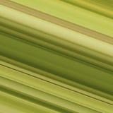 Diagonal stripe pattern Royalty Free Stock Images