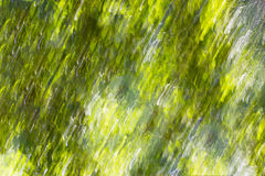 Diagonal summer green motion blur background Stock Photo