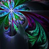 Diagonal symmetric multicolor fractal tracery. Collection - fros Royalty Free Stock Photography