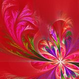 Diagonal symmetric multicolor fractal tracery. Collection - fros. Ty pattern. On red Stock Image