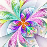 Diagonal Symmetric Multicolored Fractal Tracery. Collection - Fr Royalty Free Stock Photos