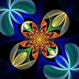 Diagonal symmetrical pattern of the flower petals. Blue and oran Stock Photo