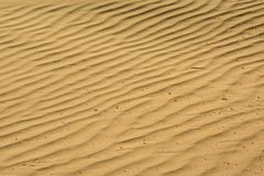 Wavy sand patterns on the beach royalty free stock images