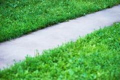 Diagonale parkweg met groene grasachtergrond stock foto