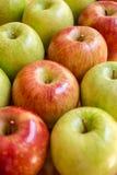 Diagonale von roten Äpfeln Rote und grüne Äpfel Stockbild