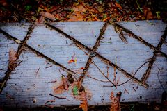 Diagonals på ridit ut regn-blött trä royaltyfri bild