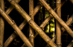 Diagonal pattern of a wood structure in a botanical garden Stock Image