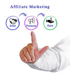 Diagram of Affiliate marketing Stock Images