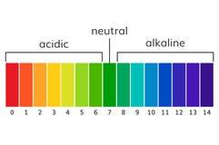 Diagram alkalisk och acidic skalavektor för ph royaltyfri illustrationer