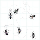 Diagram of ant patterns royalty free illustration