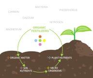 Diagram av näringsämnar i organiska gödningsmedel Royaltyfri Bild