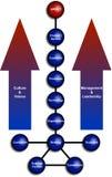 diagram biznesowa organizacja Obrazy Stock