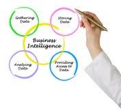 Diagram business intelligence Zdjęcie Royalty Free