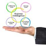 Diagram business intelligence Zdjęcie Stock