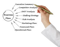 Diagram of business plan Royalty Free Stock Photo