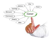 Diagram of Career development royalty free stock photos