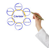 Diagram of career success Stock Photography
