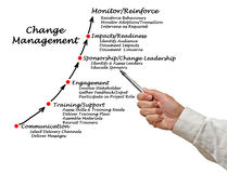 Diagram of Change Management Royalty Free Stock Photo