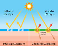 Diagram of chemical sunscreen and physical sunscreen Royalty Free Stock Images