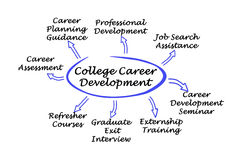 College Career Development. Diagram of College Career Development Stock Photos