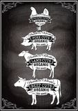 Diagram cut carcasses of chicken, pig, cow, lamb Royalty Free Stock Images