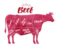 Diagram cutting cow meat. Butcher shop, bull, beef vector illustration Royalty Free Stock Photo