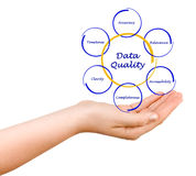 Diagram of data quality. Presenting diagram of  data quality Royalty Free Stock Image
