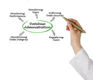 Diagram of Database Administration. Presenting diagram of Database Administration Royalty Free Stock Photo