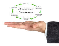 Diagram of ecommerce. Presenting diagram of ecommerce transaction Stock Image