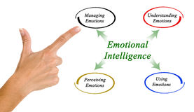 Diagram of emotional intelligence royalty free stock image