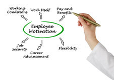 Diagram of employee motivation. Presenting different kinds of employee motivation Royalty Free Stock Photos