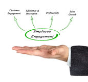 Diagram of Employment Engagement. Presenting diagram of  Employment Engagement Stock Photography