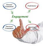 Diagram of Engagement. Man presenting Diagram of Engagement Royalty Free Stock Images