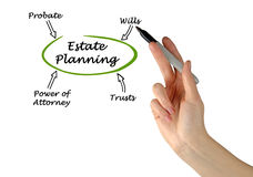Diagram of Estate Planning Royalty Free Stock Image