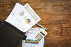 Diagram för affärsrapport som förbereder grafer på portföljpåse/summarisk rapport i diagram för statistikcirkelpaj royaltyfri bild