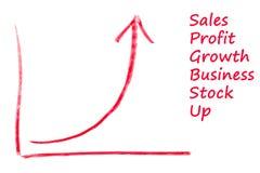 Diagram för exponential- tillväxt Royaltyfri Foto