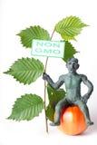 Diagram för GMO begreppsfara av en man Fotografering för Bildbyråer
