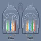 Diagram för ledningsnät för nätverkskabelkontaktdon Royaltyfri Foto