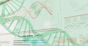 diagram för spiral 3D av DNA:t Arkivfoton
