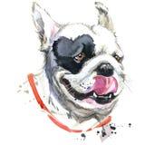Diagram för T-tröja för fransk bulldogg för kyss Hundillustration med texturerad bakgrund för färgstänk vattenfärg Ovanlig illust royaltyfri illustrationer