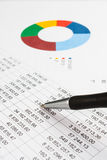 Diagram on a financial report Stock Image