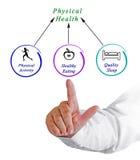 Diagram Fizyczni zdrowie fotografia royalty free