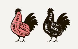 Diagram guide for cutting meat rooster, butcher shop. Chicken vector illustration royalty free stock image