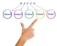 HACCP Regulatory Requirements. Diagram of HACCP Regulatory Requirements stock photos