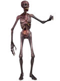 diagram halloween zombie Royaltyfri Bild